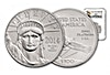 American Platinum Eagle 2014 - Graded MS 69 by NGC - 1 oz
