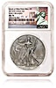 American Silver Eagle 2015 - Graded MS 69 by NGC - 1 oz