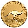 Australian Gold Kangaroo Nugget 2008 - 1 oz