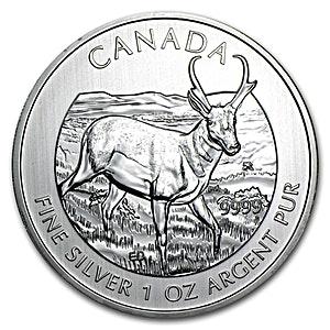 Canadian Wildlife Series 2013 - Pronghorn Antelope - 1 oz