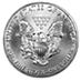 American Silver Eagle - Various years - 1 oz  thumbnail