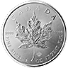 Canadian Silver Maple