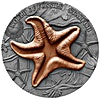 Niue Silver World of Fossils 2019 - Starfish - 2 oz