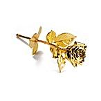 Degussa Gilded Rose - 30 cm - Yellow Gold thumbnail