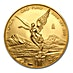 Mexican Gold Libertad 2009 - Graded MS 69 by NGC - 1 oz thumbnail