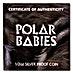 Tuvalu Silver Polar Babies 2017 - Sea Otter - 1/2 oz thumbnail