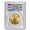 American Gold Eagle 2015 - Graded MS 70 by PCGS - 1 oz