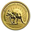Australian Gold Kangaroo Nugget 2011 - 1/10 oz