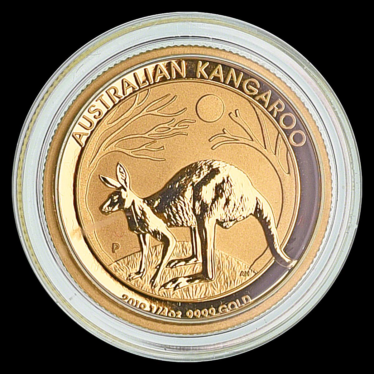 Buy Gold Kangaroo 2019 - 1/4 Oz