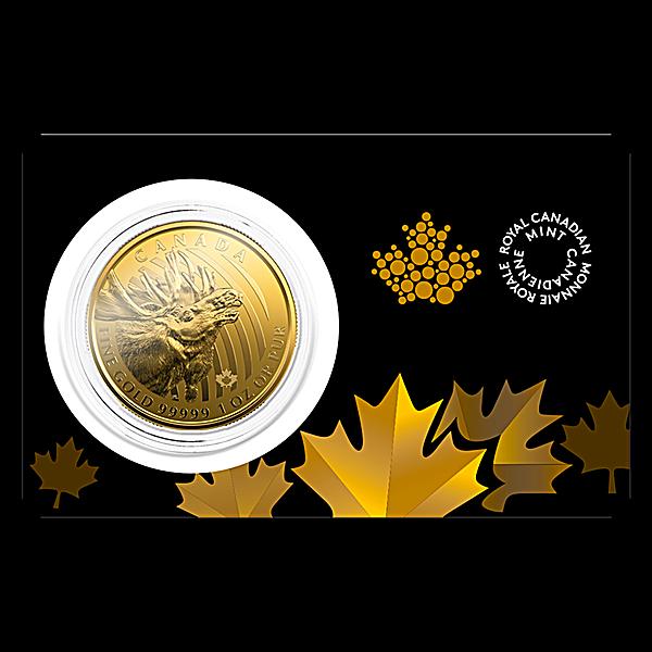 Canadian Gold Moose 2019 - 1 oz
