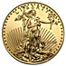 American Gold Eagle 2009 - 1 oz thumbnail