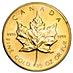 Canadian Gold Maple 1989 - 1/2 oz thumbnail