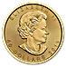 Canadian Gold Maple 2019 - 40th Anniversary Edition - 1 oz thumbnail