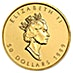 Canadian Gold Maple 1999 - 20 Years ANS Privy - 1 oz thumbnail