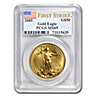 American Gold Eagle 2005 - Graded MS 69 by PCGS - 1 oz