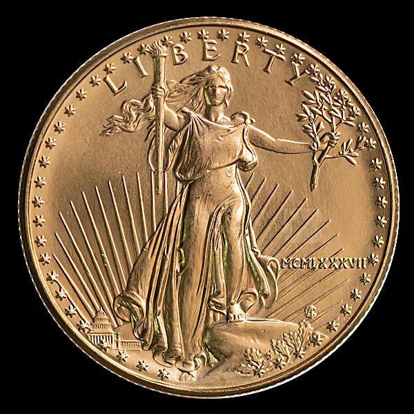 American Gold Eagle 1987 - 1/2 oz