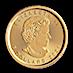 Canadian Gold Maple 2021 - 1/10 oz thumbnail