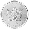 Canadian Silver Maples