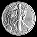 American Silver Eagle 2019 - 1 oz  thumbnail